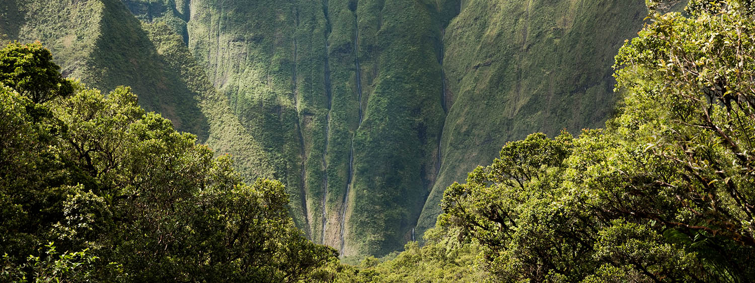 The Hardest Hike in Hawaii